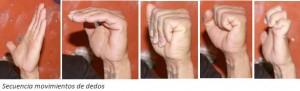 13. progresión movimiento dedos