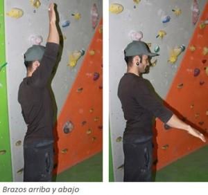 6. brazos arriba y abajo