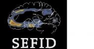 SEFID2